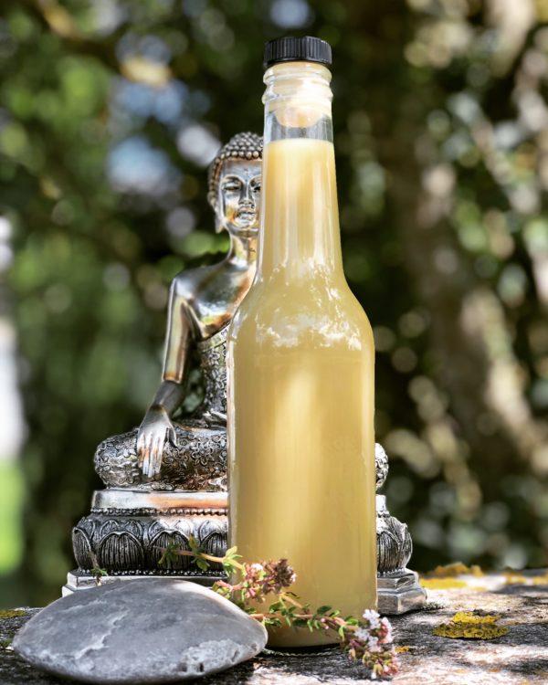 boisson naturelle thym citron cardamome Mme Green