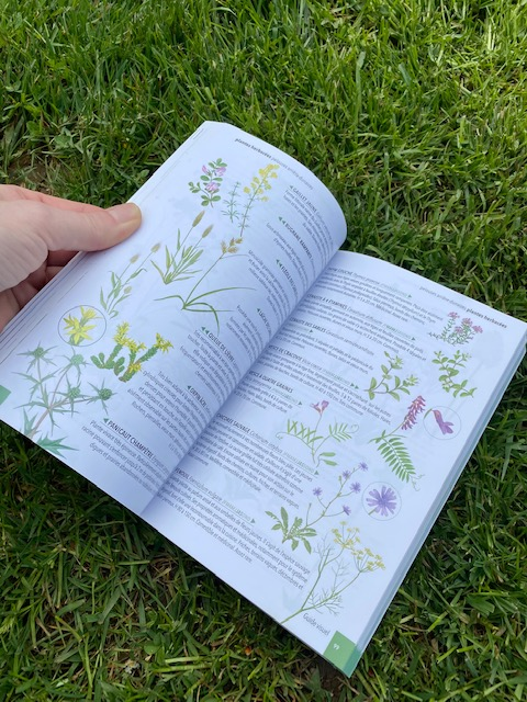 Livre plantes sauvages en normandie Mme Green