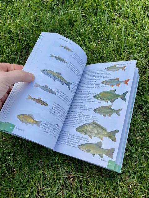 livre poissons en normandie Mme Green